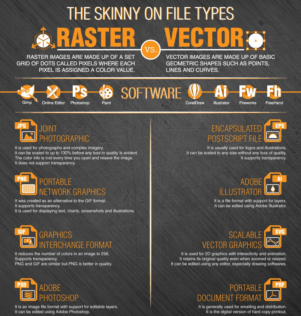 Raster vs Vector Whats the Difference and When to Use Which