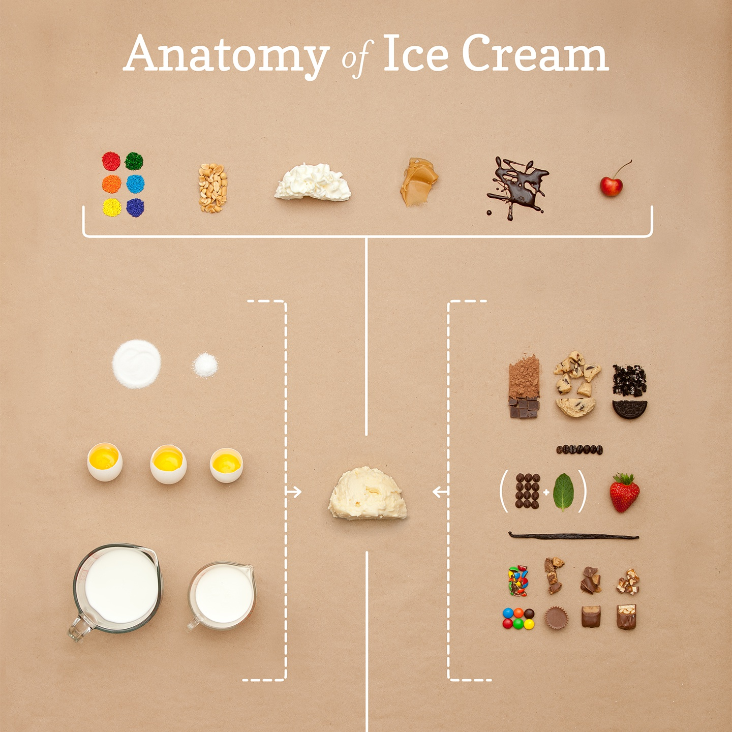 anatomy of ice cream