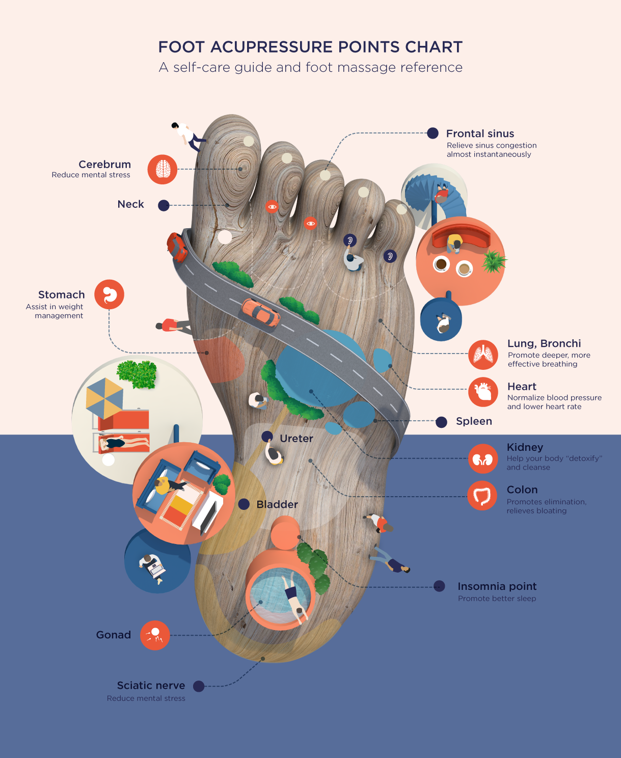 Foot Acupressure Points Chart: A Self-Care and Foot ...