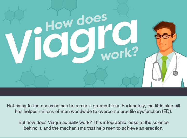 How does viagra work on females