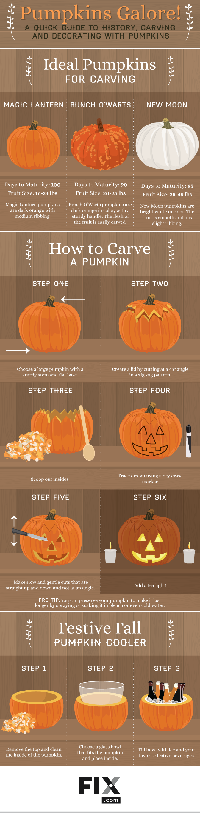 Pumpkins Galore A Quick Guide To History Carving And Decorating With Pumpkins