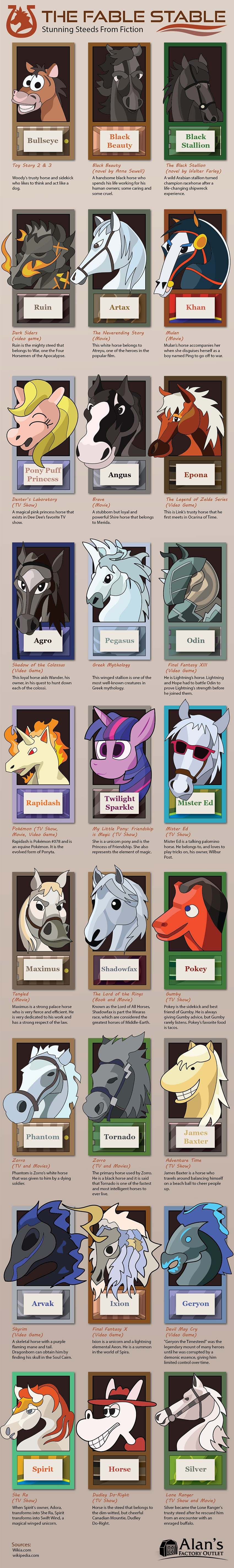 horse infographic