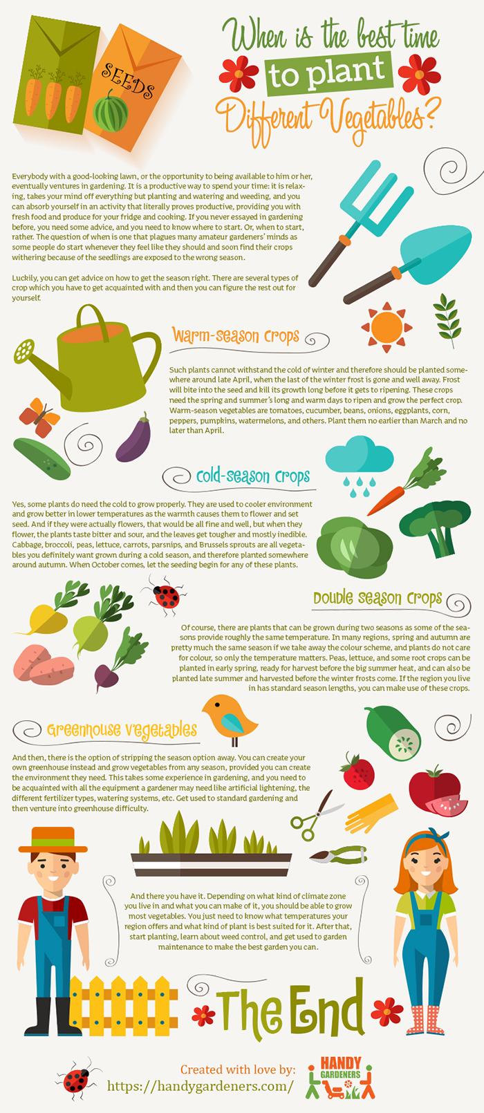 plant infographic