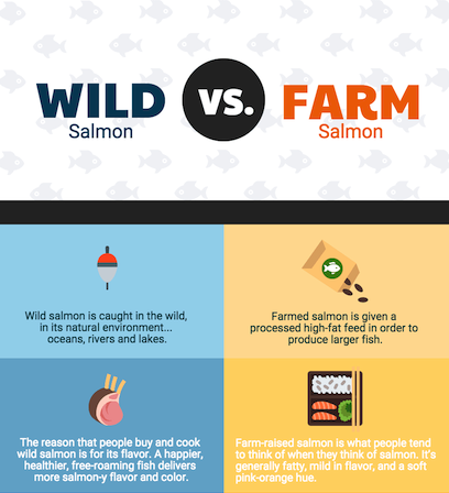 Wild Salmon Vs. Farm Salmon Comparison