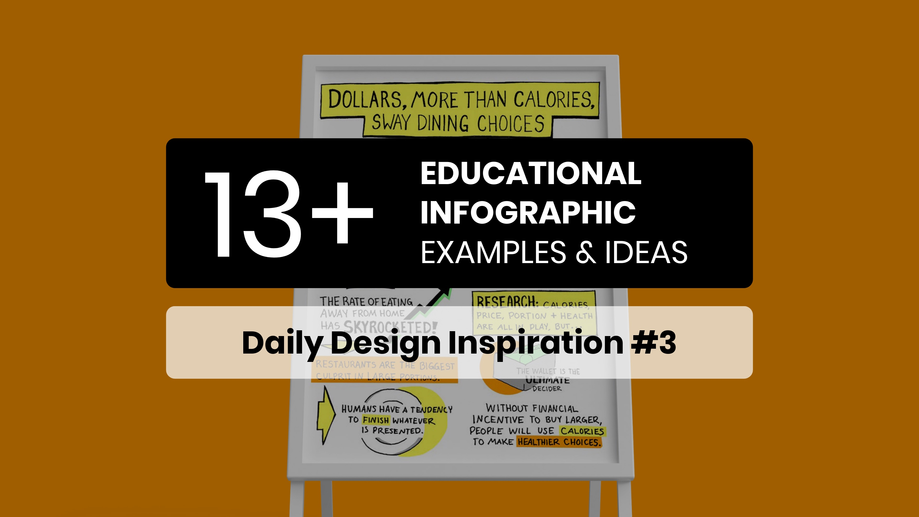 13 Educational Infographic Examples & Templates