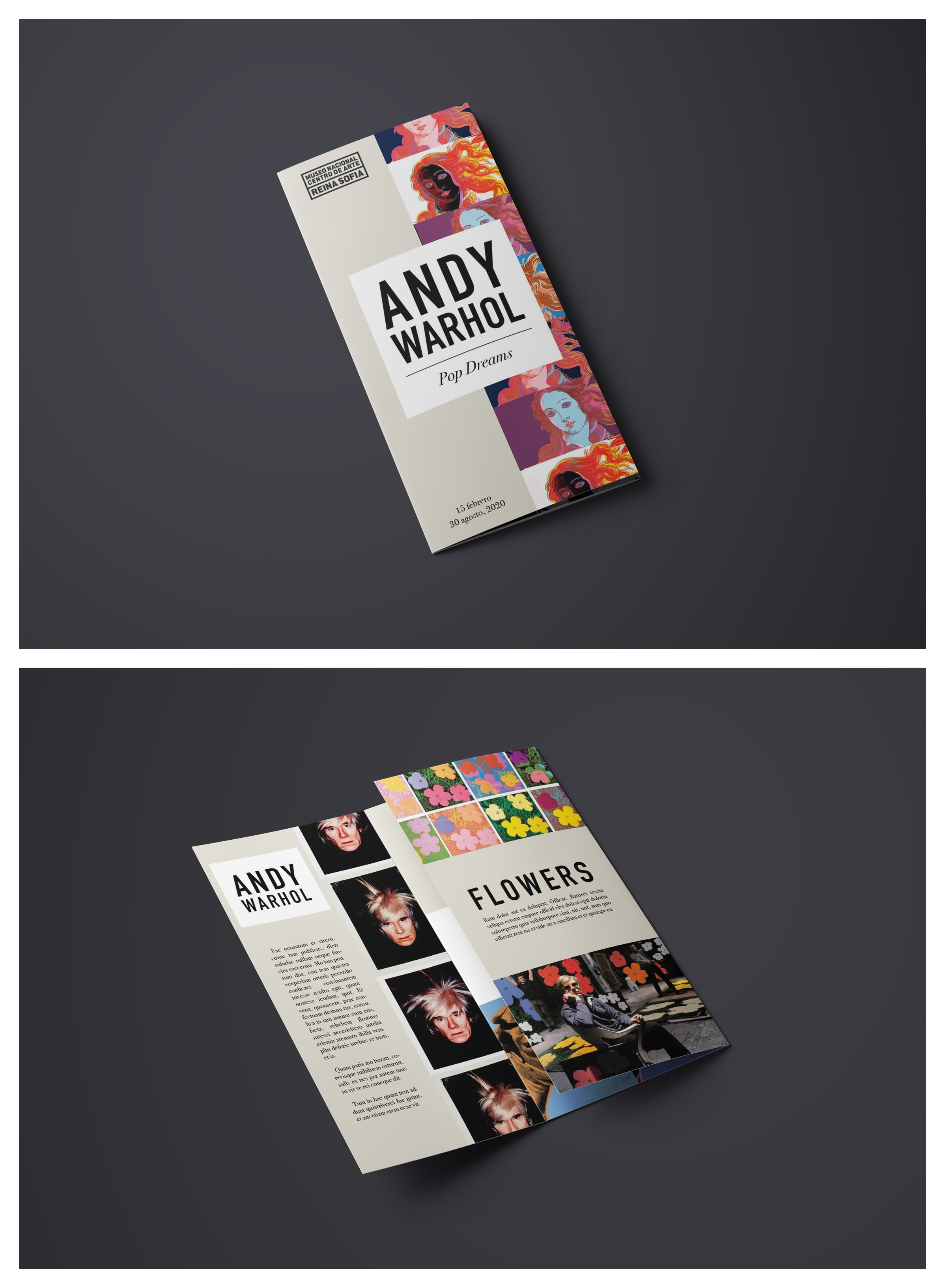 tri fold brochure examples archives 1000 infographics posters
