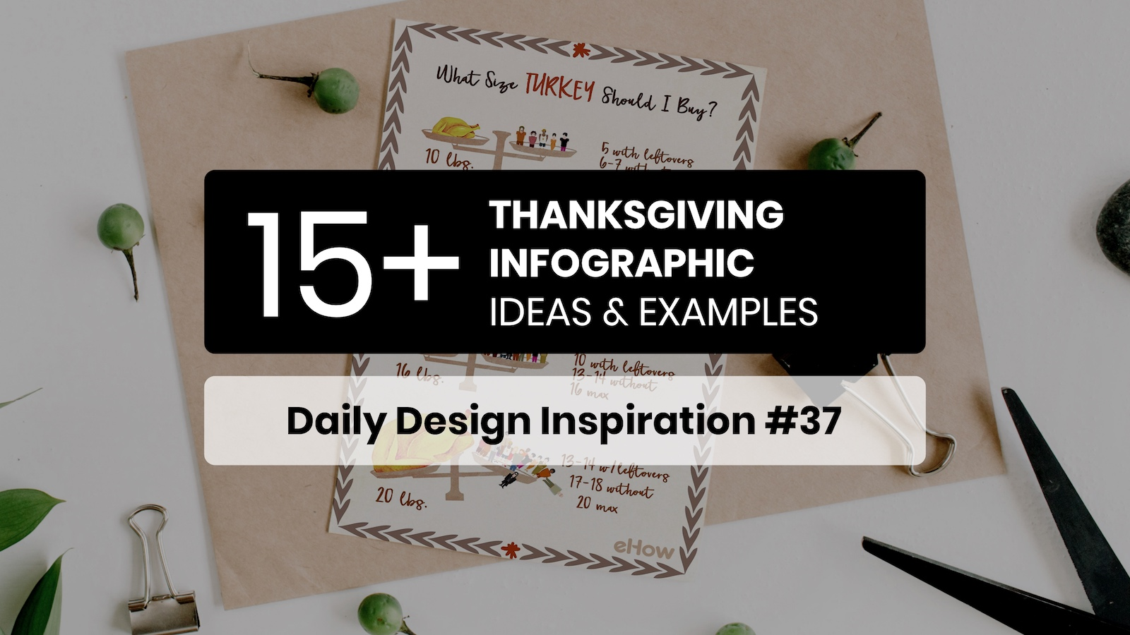 Thanksgiving Infographic Examples